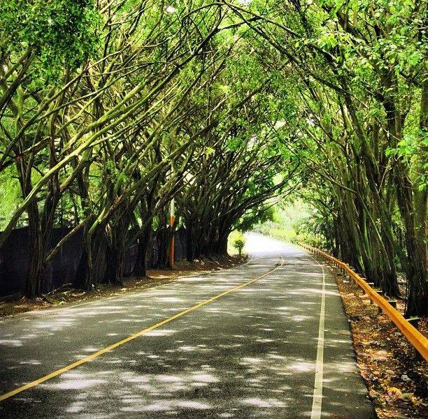 Excursiones en Jarabacoa RD